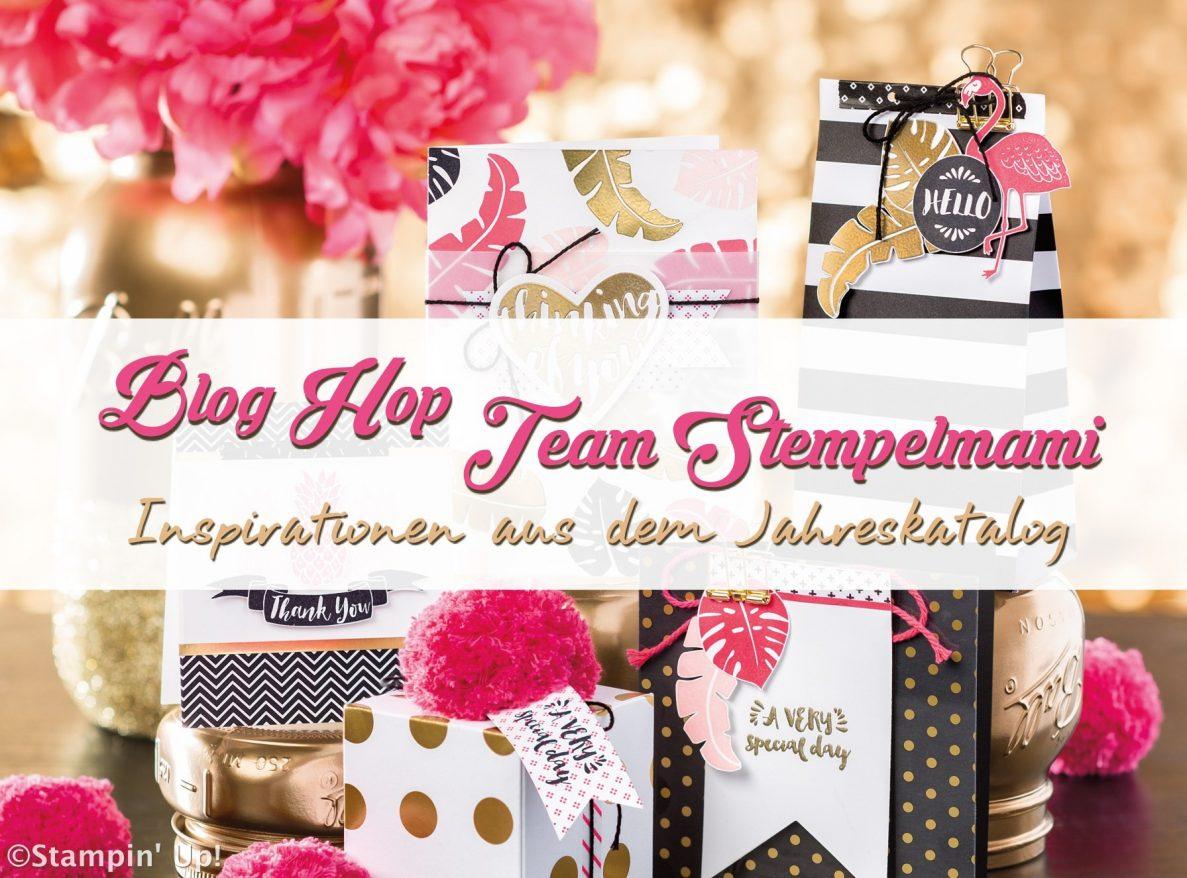 Blog Hop Team Stempelmami: Taufgeschenk plus Karte mit dem Designerpapier Pink mit Pep