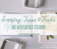 Acrylblocktechnik-Stampin Up- Kaarst_stempelnmitliebe Bild