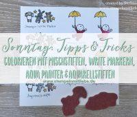 Colorieren-Stampin Up- Kaarst_stempelnmitliebe Bild