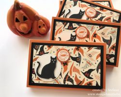 Toffiffee – Verpackung – Halloween -Kaarst – Stampin Up_stempelnmitliebe (1)