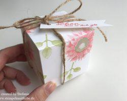 Verpackung – Herbstanfang – Stampin Up – Kaarst_stempelnmitliebe (2)