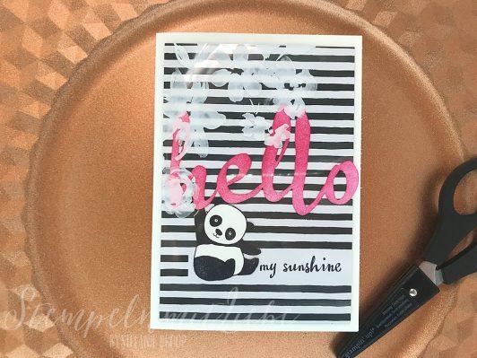 Hello my Sunshine Panda