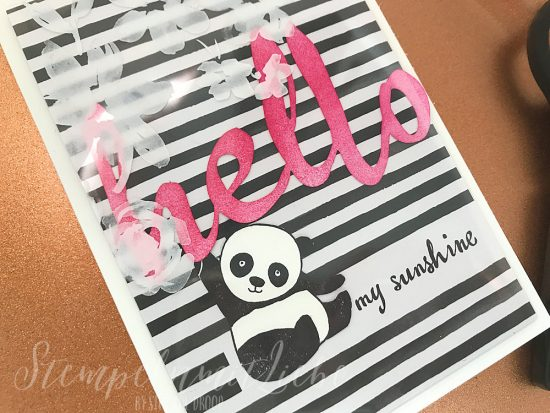 Hello my Sunshine Panda - Stampin Up - Kaarst - StempelnmitLiebe (1)