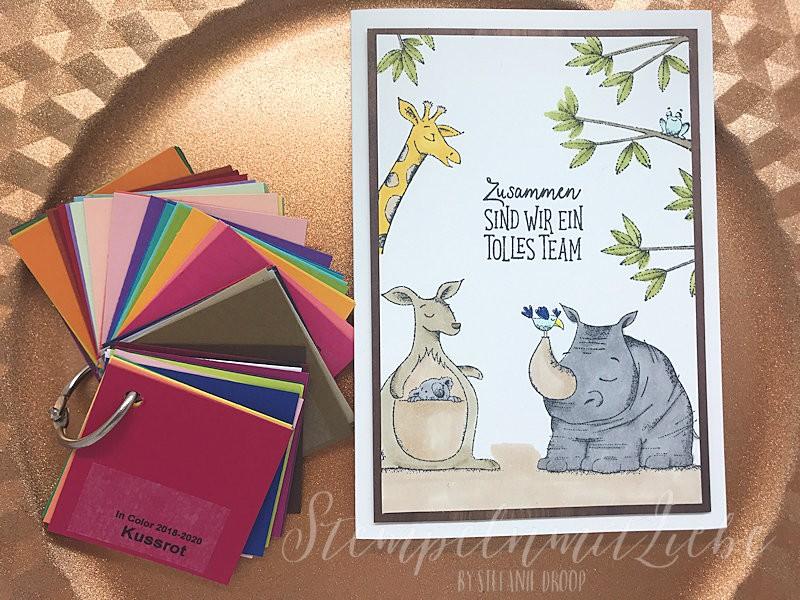 Farbfächer und eine Karte für meine Mädels - Stampin Up- Kaarst- StempelnmitLiebe (1)