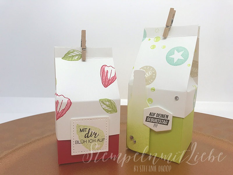 Gastgeschenkebox mit Deckel und Anleitung - Stampin Up - StempelnmitLiebe (1)