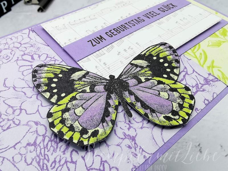 Gutscheinverpackung Schmetterlingsvielfalt