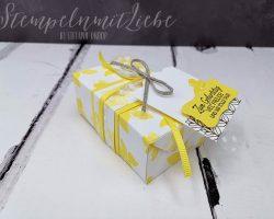 Perfekte-Päckchen-in-Ananas-StempelnmitLiebe-1