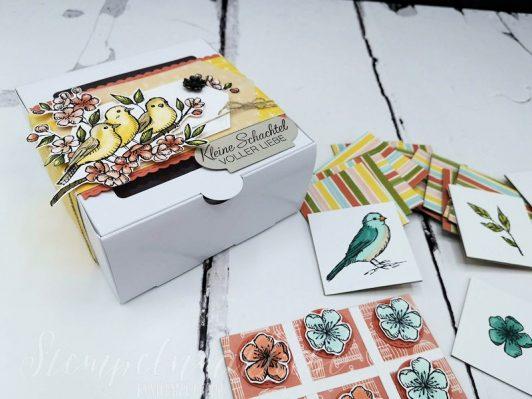 Anleitung: Spielesammlung Vogelgarten