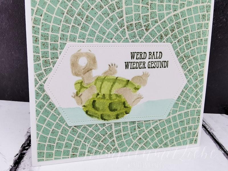 Gute Besserung mit Schildkröte