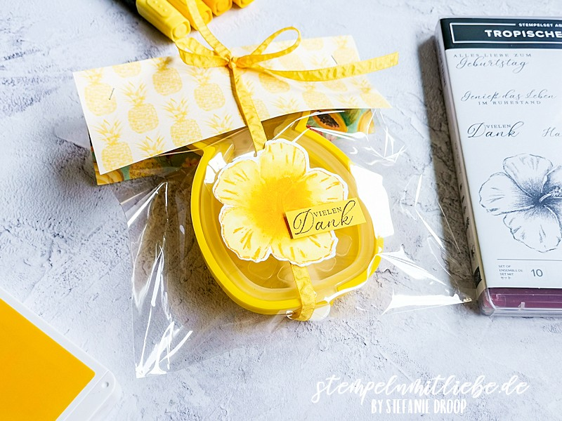 Ananas Eis verpackt mit Tropische Träume