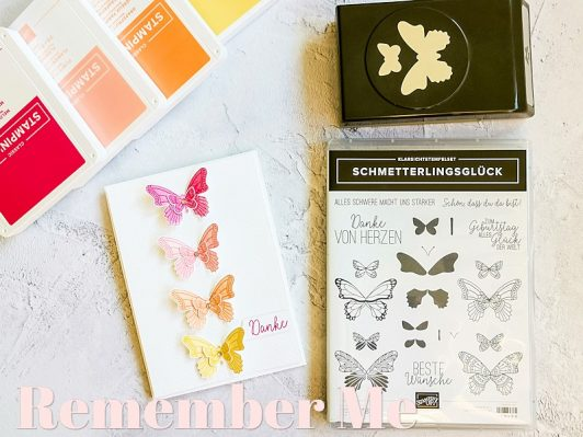 Schmetterlingsglück 3: Remember Me