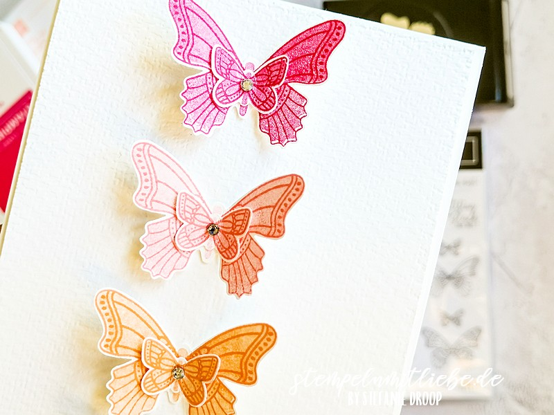 Schmetterlingsglück 3: Remember Me