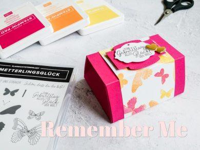Schmetterlingsglück 5: Remember Me