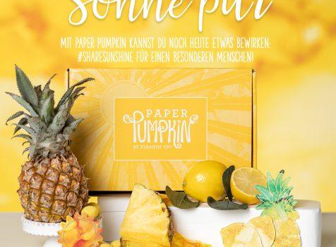 PAPER PUMPKIN-SET SONNE PUR