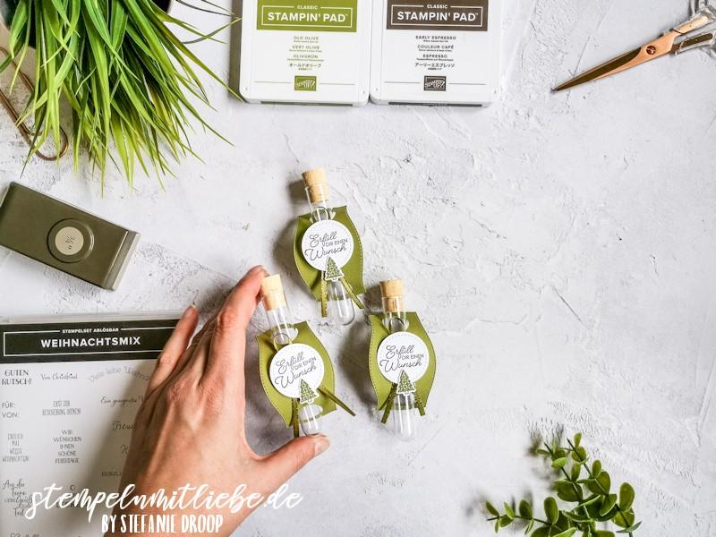 Geschenkverpackung für Geldgeschenk - Stempelset Herzerwärmend - Stempelset Weihnachtsmix - Stampin' Up! - Reagenzglas - Olivgrün