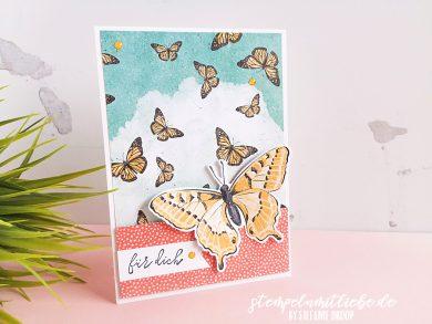 Für dich mit Schmetterlingsschmuck