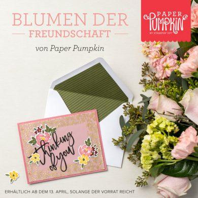 Paper Pumpkin Blumen der Freundschaft