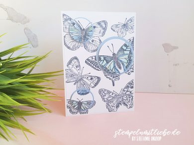 Spotlight Technik mit Butterfly Brilliance