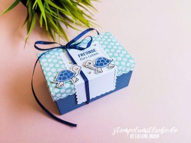 Verpackung in Abendblau mit Chill-Kröten