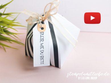 Video: Kuppelbox Variante Nr. 1