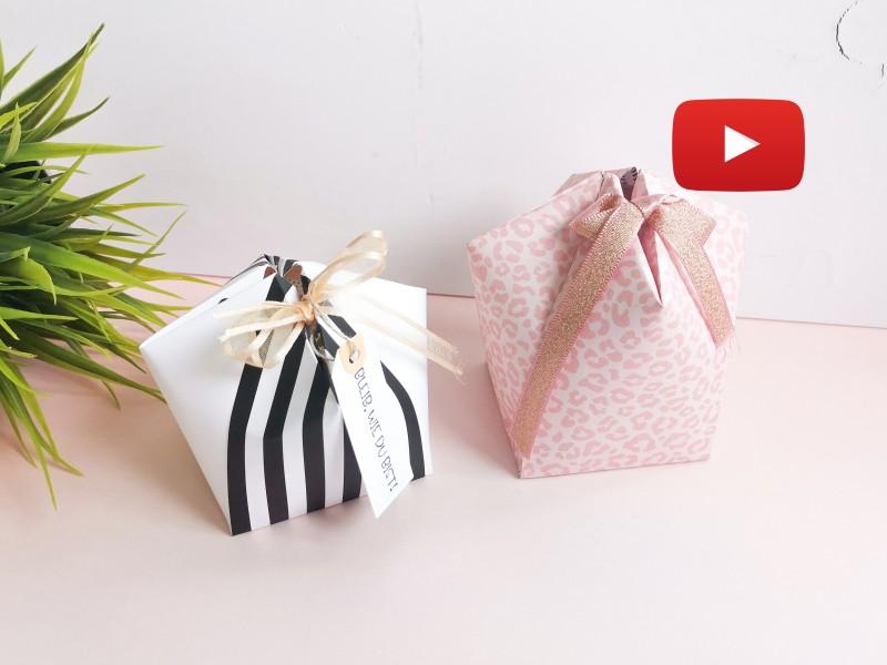 Video: Kuppelbox Variante Nr. 2