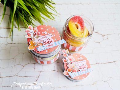 Süsse Pfirsiche verpackt im Glas
